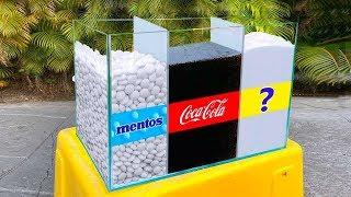 سينيا وتجربته: كوكا كولا ومنتوس