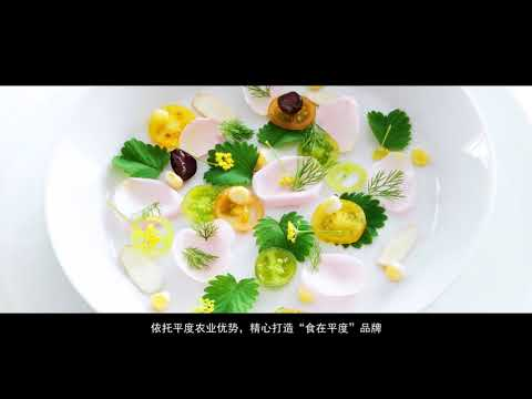 平度宣传片 20170222带字幕