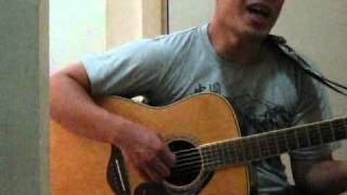 Cover - Acoustic Guitar - Sometimes When We Touch