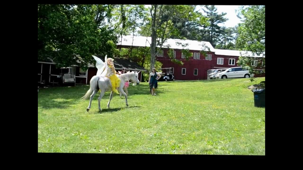 Real Unicorn Spotted in Maryland!! MUST SEE!! - YouTube  Real Unicorn Sp...