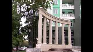 видео институт экономики и менеджмента влгу