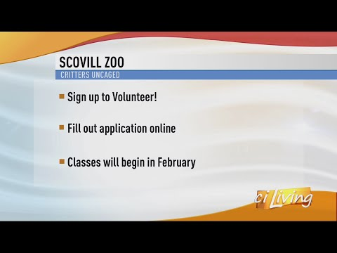 Volunteering at the Scovill Zoo