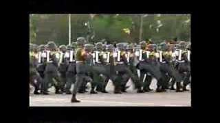 Parada Militar 2013 Chile:Ejército de Chile completo