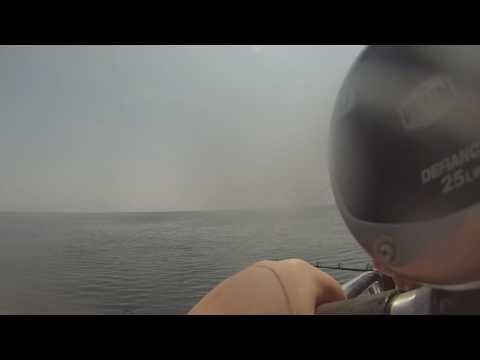 Deep sea fishing with Eastmans fishing fleet