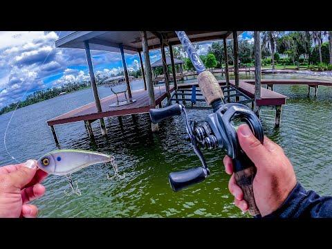 Fishing Strange Abandoned Docks For Aggressive Fish + HUGE ANNOUNCEMENT