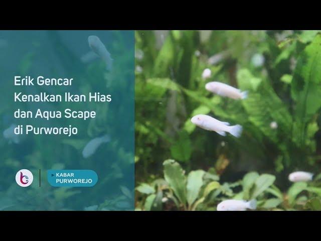 Erik Gencar Kenalkan Ikan Hias dan Aqua Scape di Purworejo