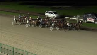 Vidéo de la course PMU PRIX PAYDAY WINNER CHALLENGE (FINALE)