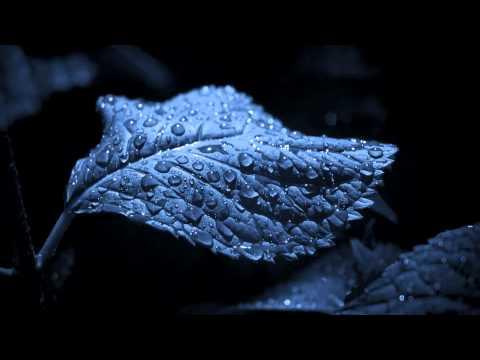 Sad Calm Ambient Music -