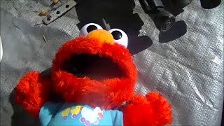 Microwave Me: Elmo