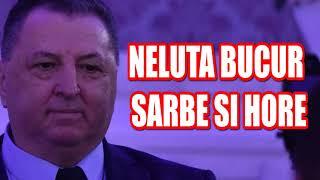 Descarca Neluta Bucur - Muzica de petrecere 2020 Colaj Cele mai noi melodii