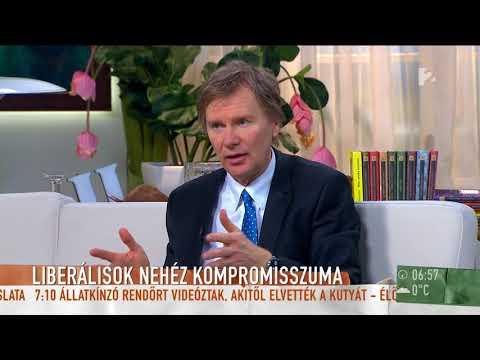 Fodor Gábor az MSZP-Párbeszéddel való kompromisszumról: Nehéz, fájdalmas döntés volt - tv2.hu/mokka