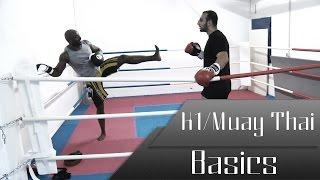 K-1/Muay Thai Basics - Mit Coach Amir Taremizad