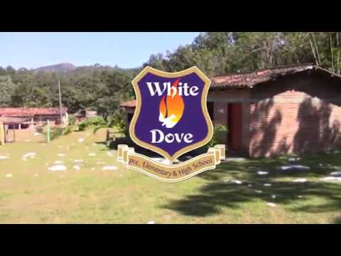 WHITE DOVE SCHOOL 2017 / SANTA CLARA