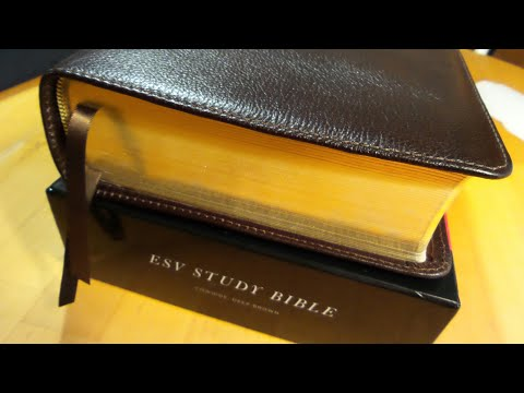 ESV Study Study Bible Deep Brown Cowhide!
