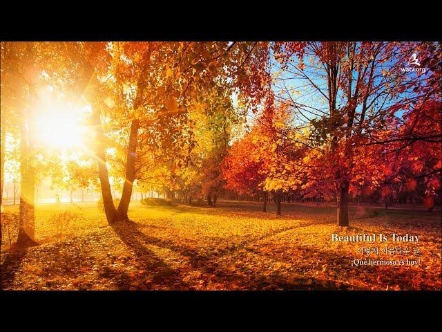 〖NEW SONG〗Beautuful is Today 이렇게 아름다운 날 ▷ 하나님의교회 세계복음선교협회