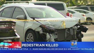 Pedestrian Killed In Hallandale Beach Crash