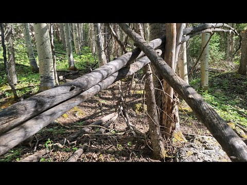 Bigfoot Lair? High Elevation, Elwood Pass, Searching for Aerial Camera Found This Instead.  PT 2