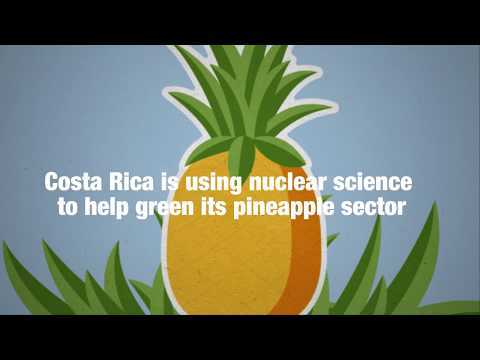 Costa Rica Paves the Way for Climate-Smart Agriculture