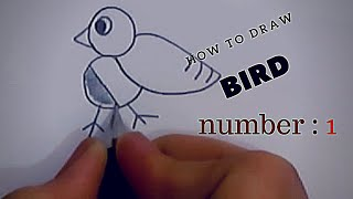 how to draw bird for toddlers and kids