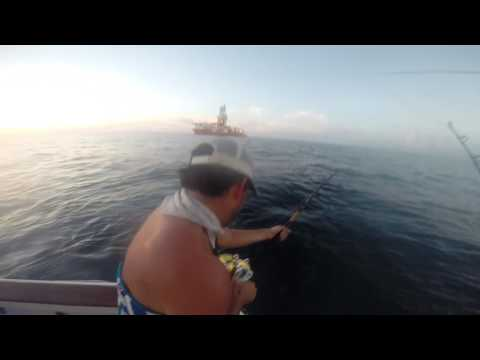 Tuna Trip Gulf of Mexico