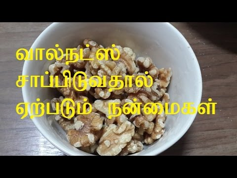 All About Nutrition: Nutrition Meaning In Tamil
