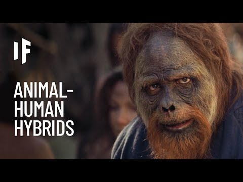 What If We Created Hybrid Human-Animals?