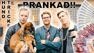 Video JLC → PRANKAR FOLK PÅ STAN!!! download MP3, 3GP, MP4, WEBM, AVI, FLV Oktober 2018