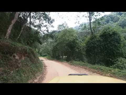 P2082255   Rijden door Bwindi NP