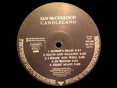 Ian McCulloch - IN BLOOM