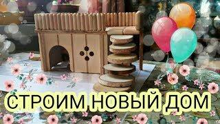 как сделать дом для хомяка своими руками из коробки