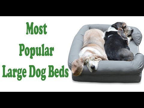 most-popular-large-dog-beds-in-american-||-amazon-best-large-dog-beds.