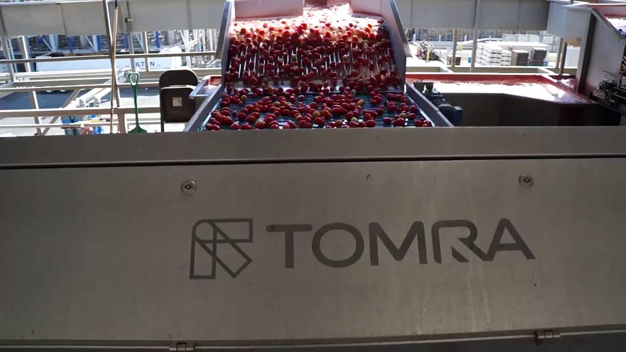 Tomato sorting machine Sentinel II - TOMRA Sorting