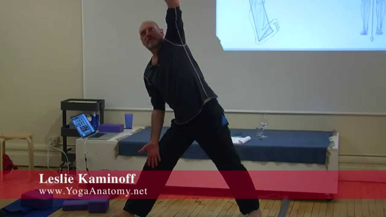 Building An Asana – What Comes First? - Leslie Kaminoff [YogaAnatomy ...