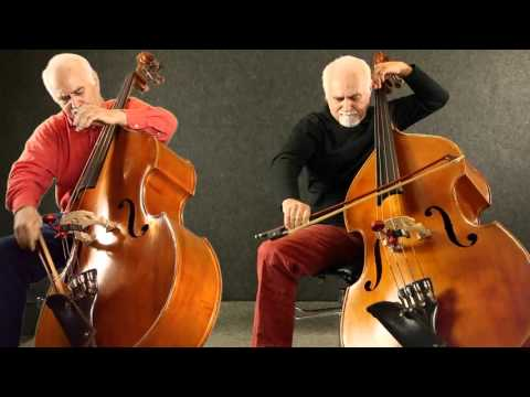 Flight of the BumbleBee for two Double Basses