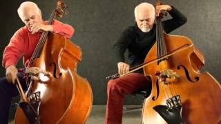 Flight of the Bumble-Bee for two Double Basses