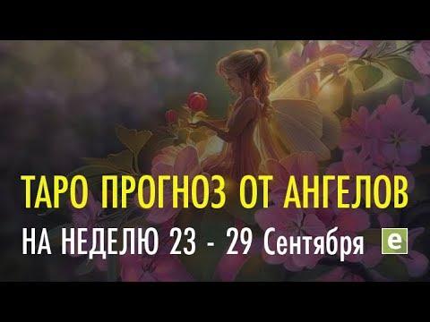 С 23 сентября по 29 сентября  - прогноз на неделю на картах Таро от Русалок и эксперта Ксении Матташ