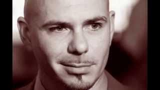 Фото Обзор «Pitbull» #1
