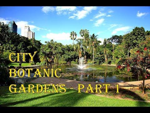 City Botanic Gardens - Brisbane Part 1
