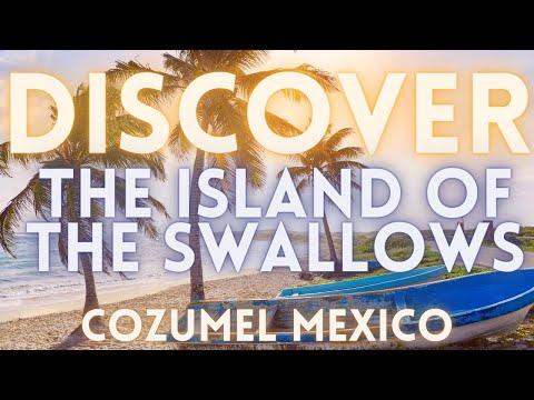 Travel To Cozumel Mexico 4K HD