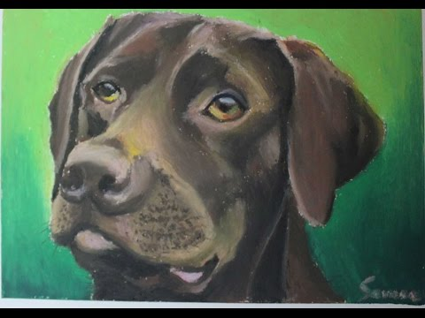Oil Pastel tutorial for Beginners   How to draw a Dog   Saminspire