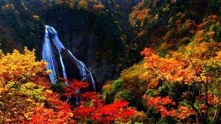 Японская Осень. (Japanese Autumn)