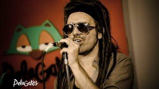 Dread Negast - Reggae en PelaGatos - El Genio del dub (Fabulosos Cadillacs)