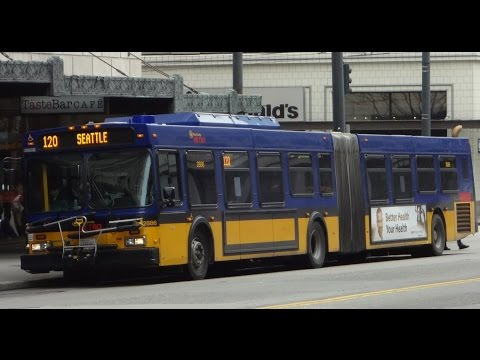 TOUGH KITTY!!! King County Metro 2004 New Flyer D60LF 2886 on Rt. 16