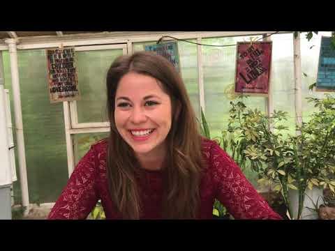 Julia Reyes April 2018 Artist of the Month