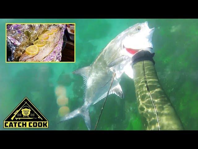 Spearfishing Garrick [catch cook] South Africa, Glen Garriff