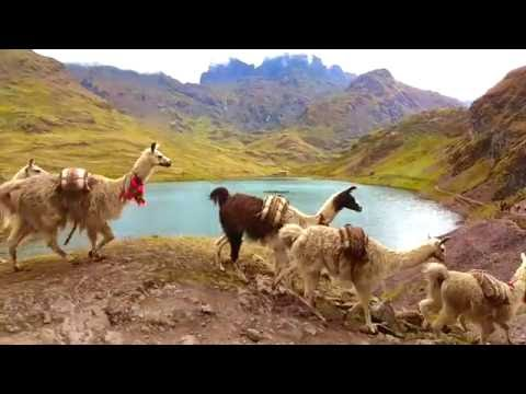 SAM Travel Peru - Hiking Tours to Machu Picchu - Lares Trek