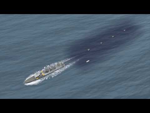Seismic airgun testing: U.S. to decide this year whether to allow controversial practice
