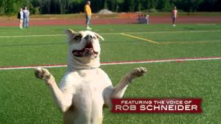 PUPS UNITED Official Trailer (2015) - Rob Schneider - YouTube