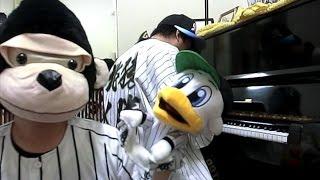 今年八月去千葉羅德看球時,覺得他們的開場曲很好聽,決定來彈一下~ 歌...