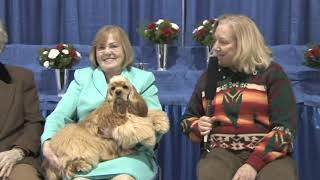 See the final selections in Cocker Spaniel Futurity events at the F...